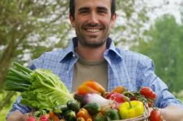 food-marechalfraicheur-legumes3