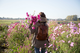 Bosquet Fleurs