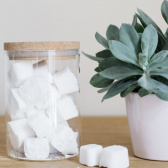 Atelier green Fabriquer ses pastilles écologiques